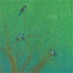 3 daagse Cursus Genieten van kleur met pastelkrijt in natuur Marijke de Vries kunstzinnige therapie beeldend