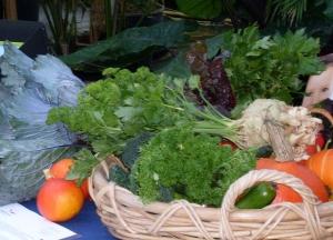 Biomarkt met Haarlemse biologische groenten De Nieuwe Akker