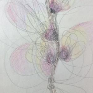 Natuurkrachten ervaren en kunstzinnig leren benaderen Marijke de Vries kunstzinnige therapie beeldend